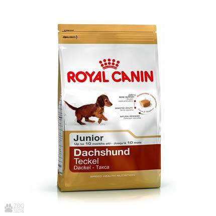 Корм Royal Canin для молодых такс