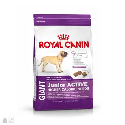 Фото корма для собак Royal Canin GIANT JUNIOR ACTIVE