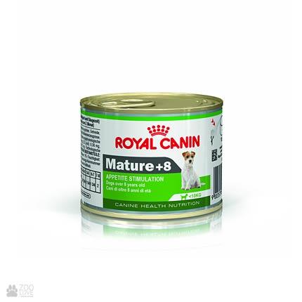 Фото консервированного корма для собак старше 8 лет Royal anin MATURE +8