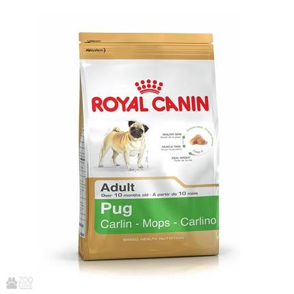 Royal Canin для взрослых мопсов