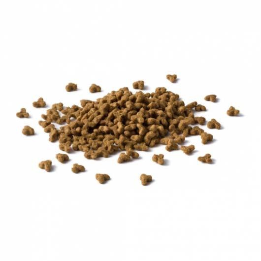 Фото корма сухого для котят Cat Chow Kitten, крокеты