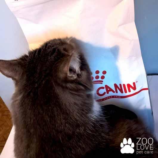 Вкусный корм для кошек Royal Canin INDOOR