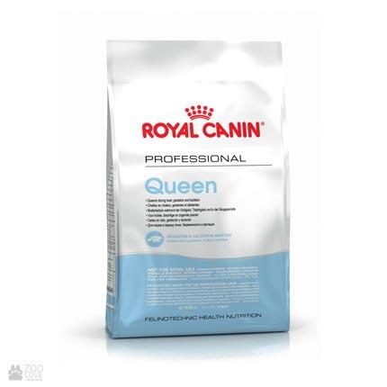 корм для для беременных и кормящих кошек Royal Canin QUEEN (новая упаковка)