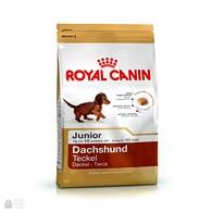 Royal Canin Dachshund Puppy, корм для молодых такс