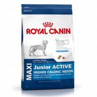 Royal Canin Maxi Junior Active, корм для активных щенков крупных пород