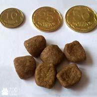 Размер гранул корма Royal Canin British Shorthair в сравнении монетами 10, 25, 50 коп