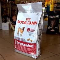 Royal Canin Medium Dermacomfort, корм для собак средних пород с чувствительной кожей